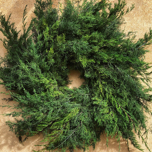 Fresh Cedar Wreath