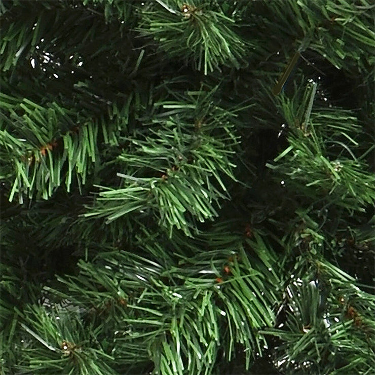 close up of mixed pine branches