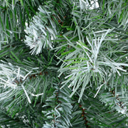 detail shot of pine branches with frosted effect