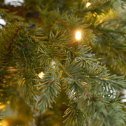 close up detail of realistic mixed pine branches with warm white lights