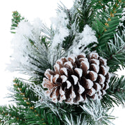 close up of snow flocked branches and pine cones