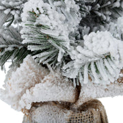 close up detail of snow flocked branches, fluffy realistic texture