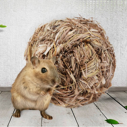Pet Hamster Grass Ball Chew Toy