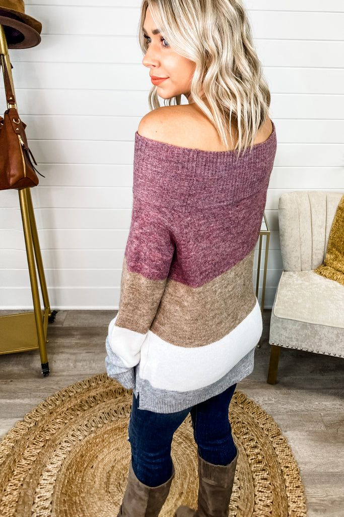 Loving This Life Plum Mocha Colorblock Sweater