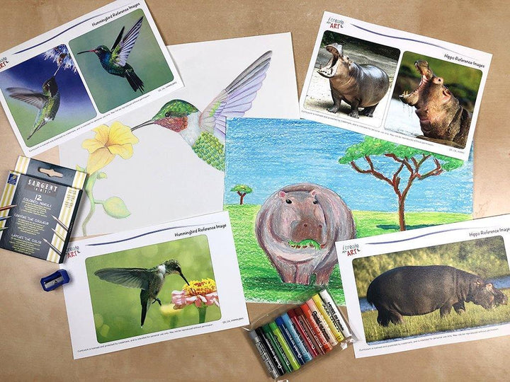 Creative Artist Series: Hippopotamus & Hummingbird Art Box I Create Art