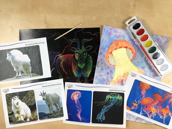 Creative Artist Series: Jellyfish & Mountain Goat Art Box I Create Art