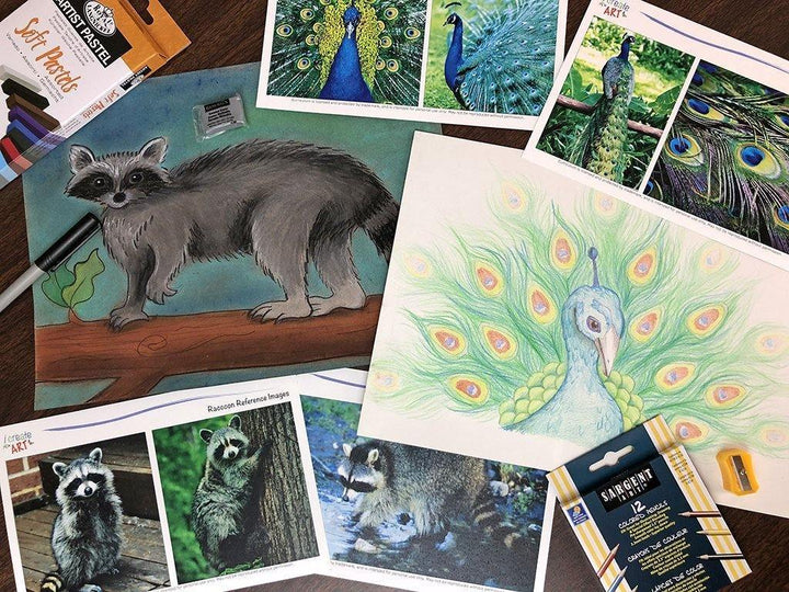 Creative Artist Series: Raccoon & Peacock Art Box I Create Art