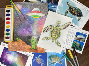 Creative Artist Series: Sea Turtle & Space Alien Art Box I Create Art