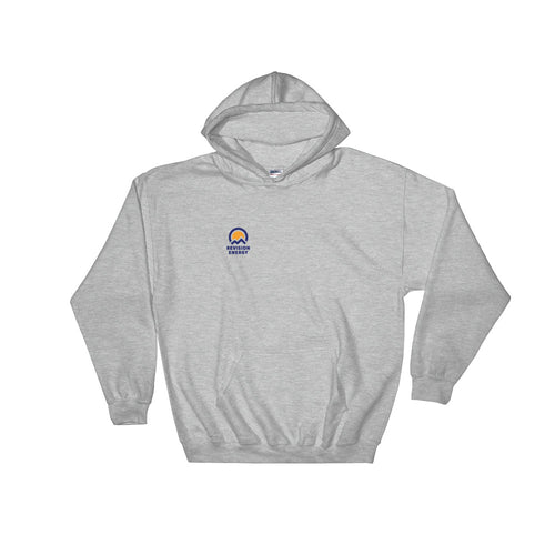 The ReVisionista Hoodie