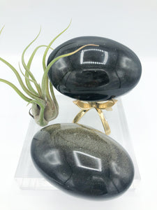Gold Sheen Obsidian Palm Stones