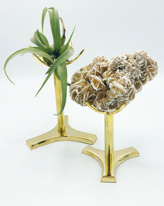Brass Mineral Claw Stands