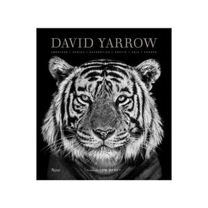 David Yarrow Photography: Americas Africa Antarctica Arctic Asia Europe