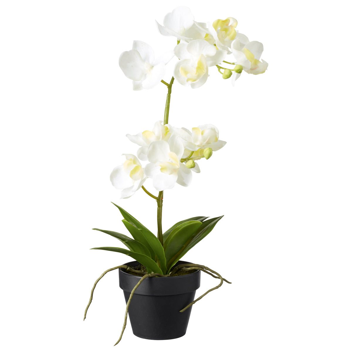 Faux White Orchid - Small