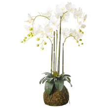 Load image into Gallery viewer, Faux White Orchid - Medium