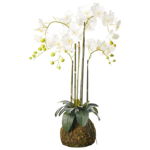 Faux White Orchid - Medium