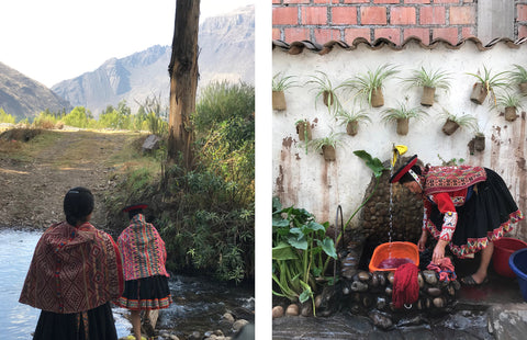 foraging and natural dyeing peru