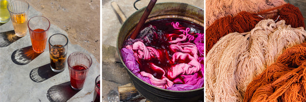 the colors natural dyeing in oaxaca
