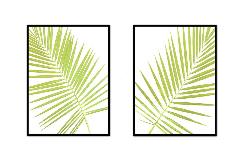 Palm Frond Pair