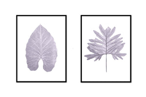 Large Leaf Pair