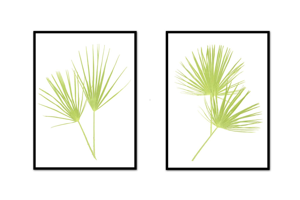 Happy Palm Pair