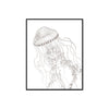Jellyfish Vintage Illustration