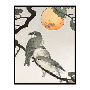Three Birds and the Moon