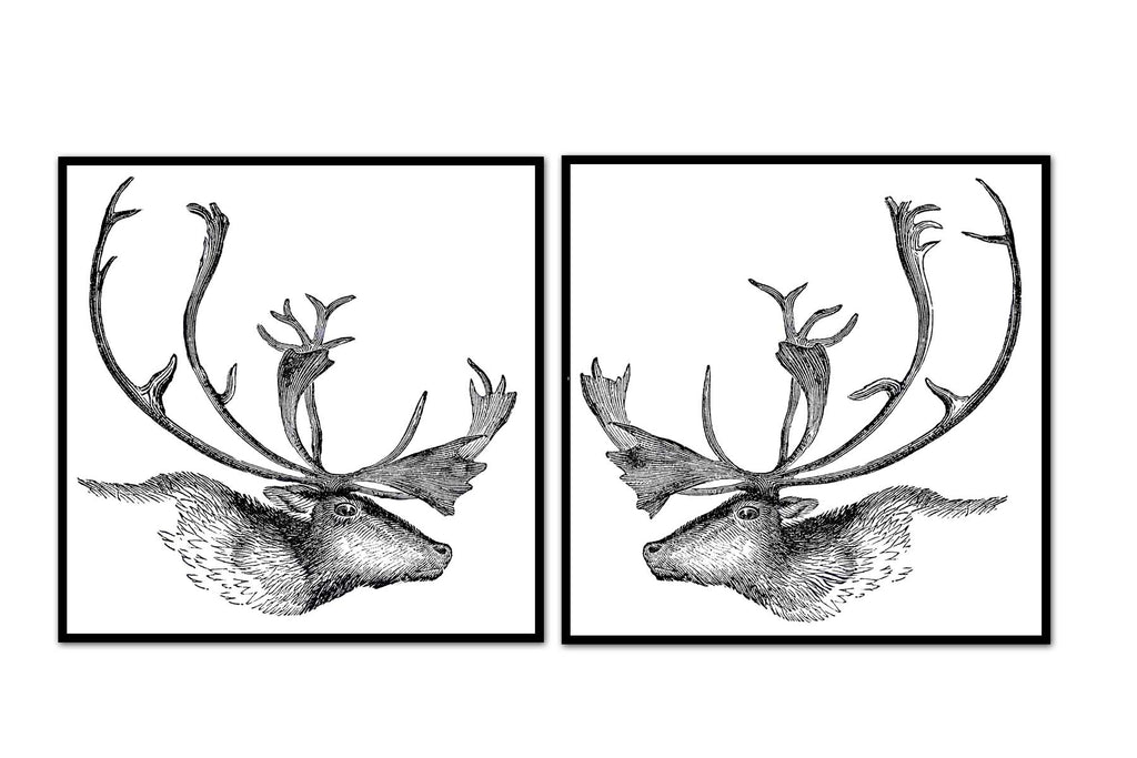 Caribou Profile Vintage Illustration Pair
