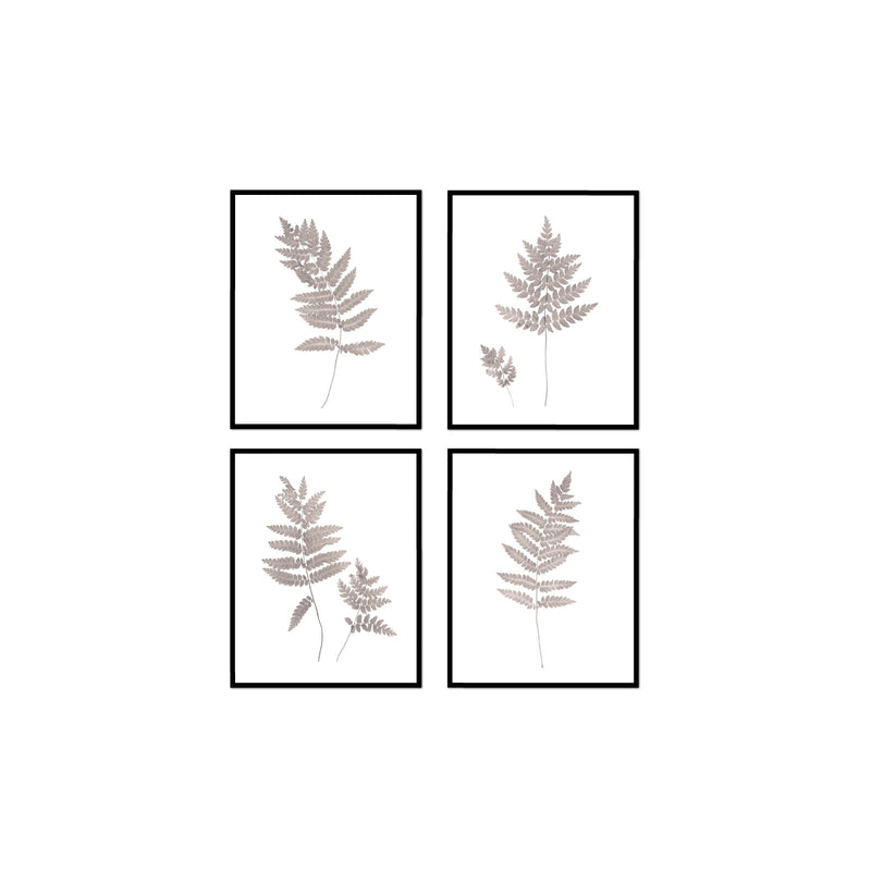 Fern Set of 4