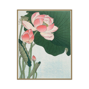 Lotus and Leaves