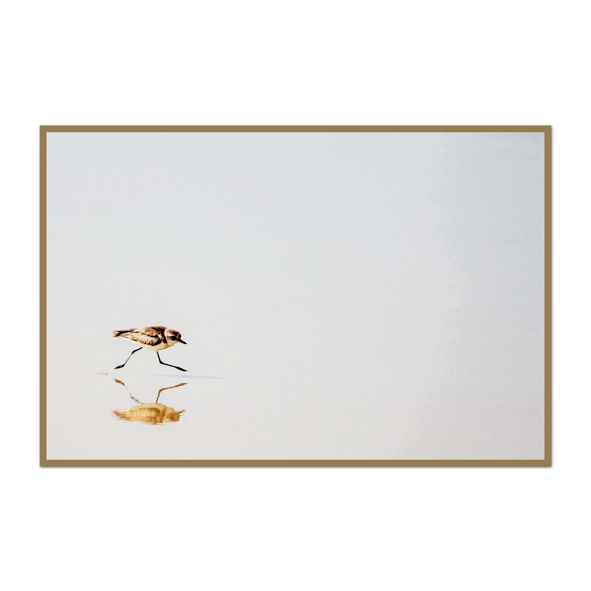 Minimalist Tiny Shorebird