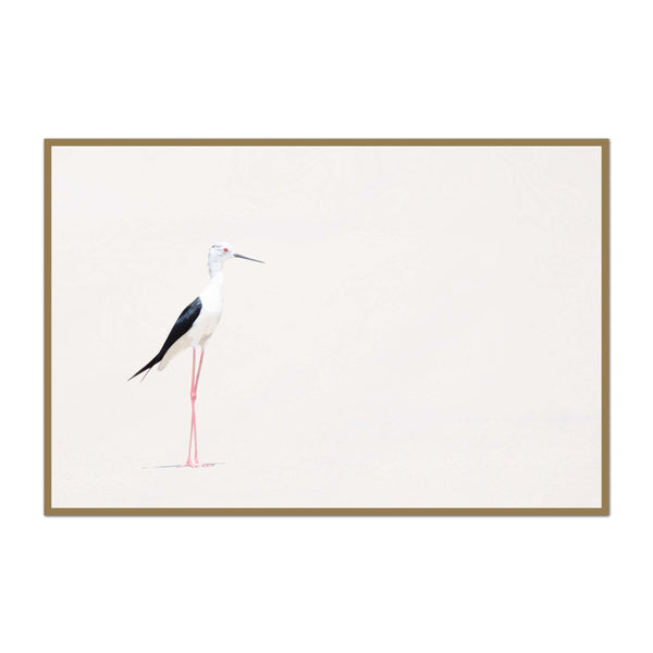 Minimalist Shorebird