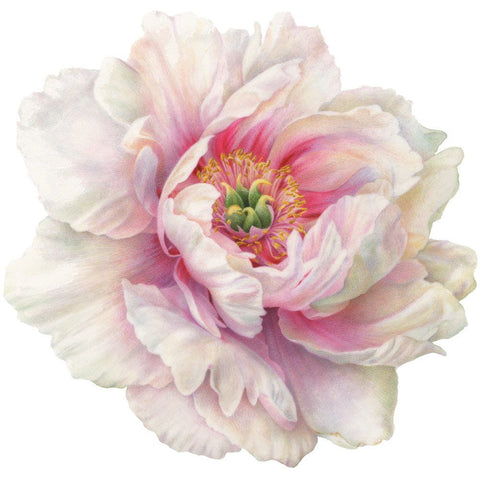 Die Cut Placemat Set - White Peony