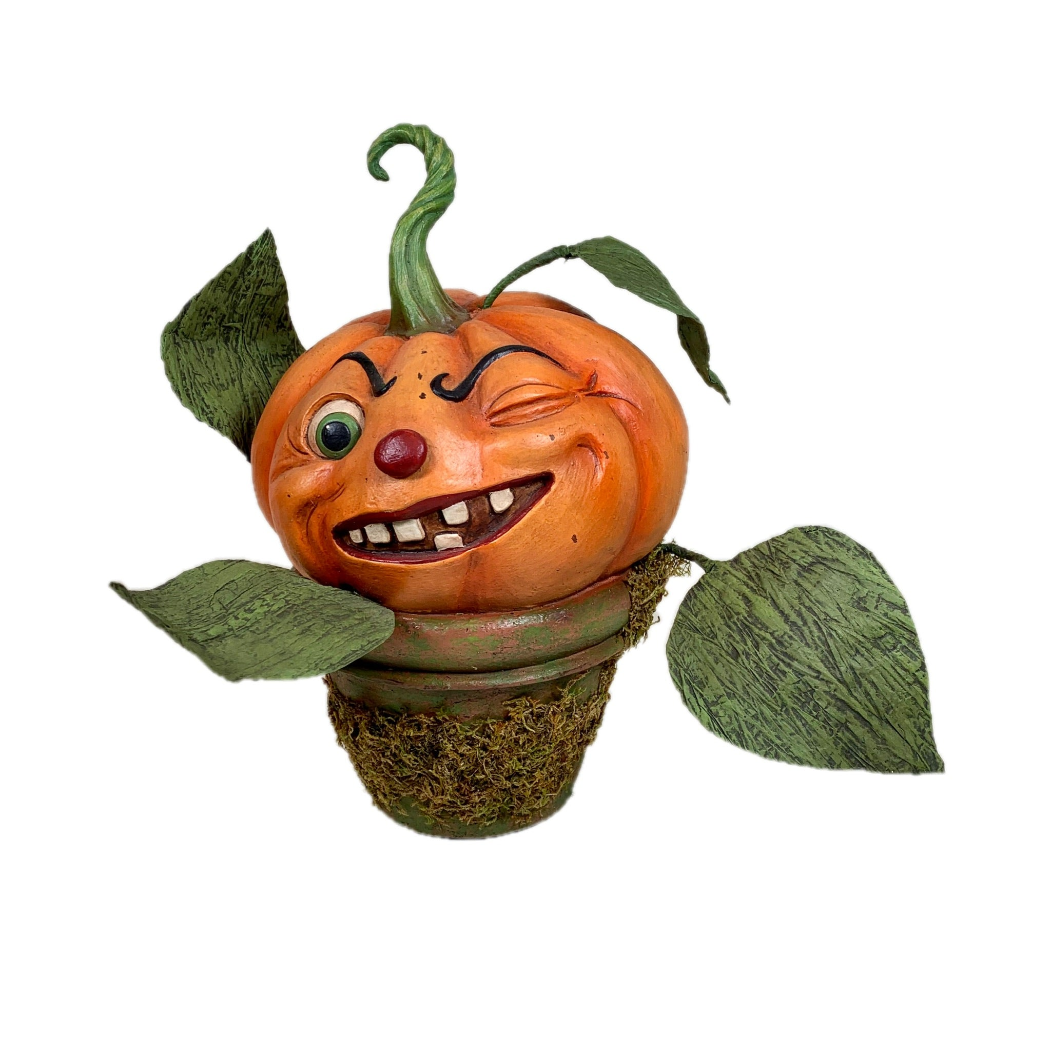 Cheeky Pumpkin Perrenial