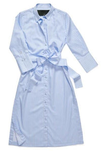 The Button Down Shirtdress in Blue Stripe