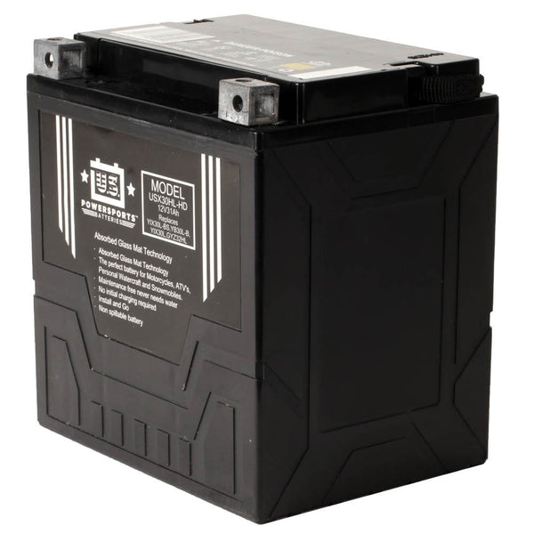 USPS AGM BATTERY USX30HL-HD   YIX30L-BS  *2