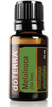 Load image into Gallery viewer, doTERRA Melaleuca