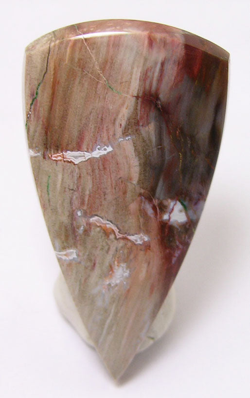 Colla Wood Petrified Wood Cabochon 51.5mm x 27.5mm x 6.5mm - WOODCABS2457