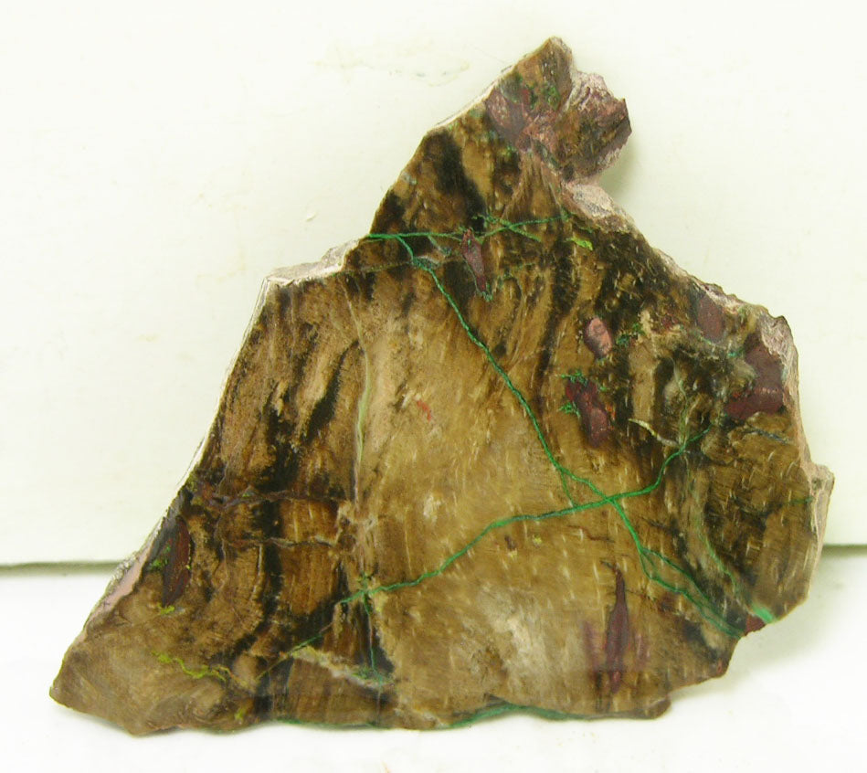 "Lapidary Slabs - Petrified Wood Lapidary Slab 2.4"" X 2.2"" X 0.17"" - WOODSLAB2308"