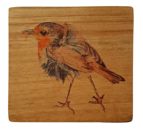Coaster : Robin on 200 year old Breton Oak