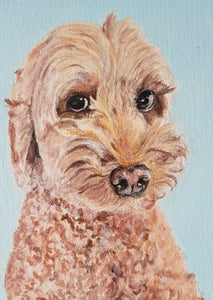 Commission - Pet Portrait On Canvas