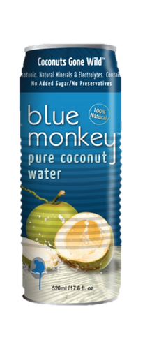 Coconut Water 17.6oz/520ml - 24 pack
