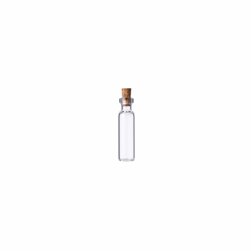 REGENT GLASS BOTTLES WITH CORK LIDS 12PCS (22MM:DX100MM)