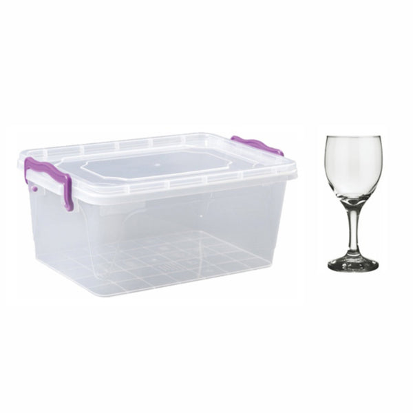 REGENT EASI STORE WITH WINE GLASSES, 24 PIECES (250ML)