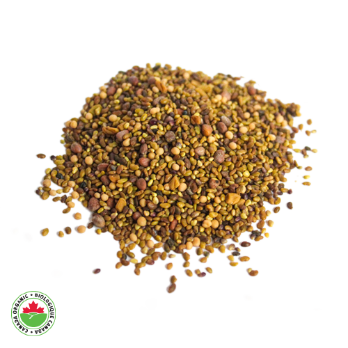 Organic Green Seed Sprouting Mix - HAMA Organics