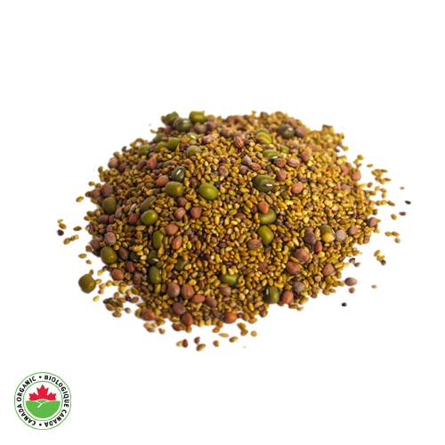 Organic Mung Bean Sprouting Mix - HAMA Organics