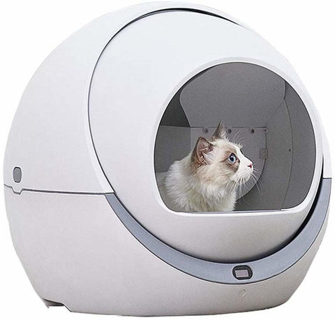Fully automatic pet cat toilet