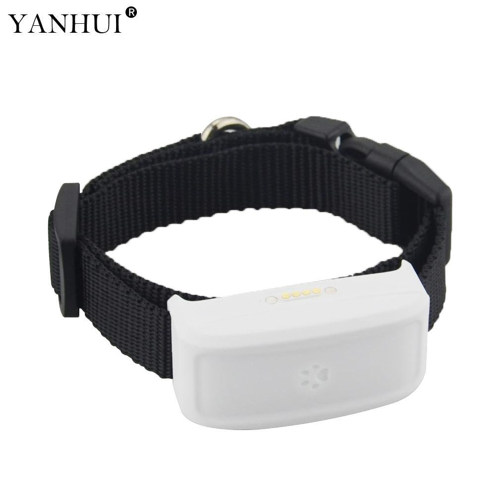 High Accuracy Small Pet GPS Tracker TK911 - RingeRaya.com