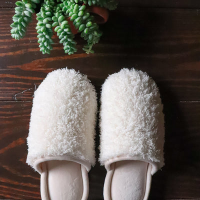 Women's Chenille Parker Clog Slippers in Ewe on hardwood with succulent