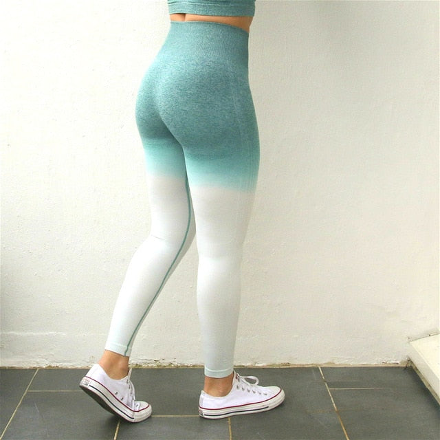 Nepoagym Women Ombre Seamless Leggings In TEAL
