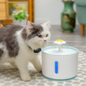 Automatic Pet Cat Water Fountain LED Electric USB - Pet Shop Boys and Girls
